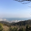 【逢坂山と長等公園】山頂の絶景と花見がを楽しむトレッキングコース