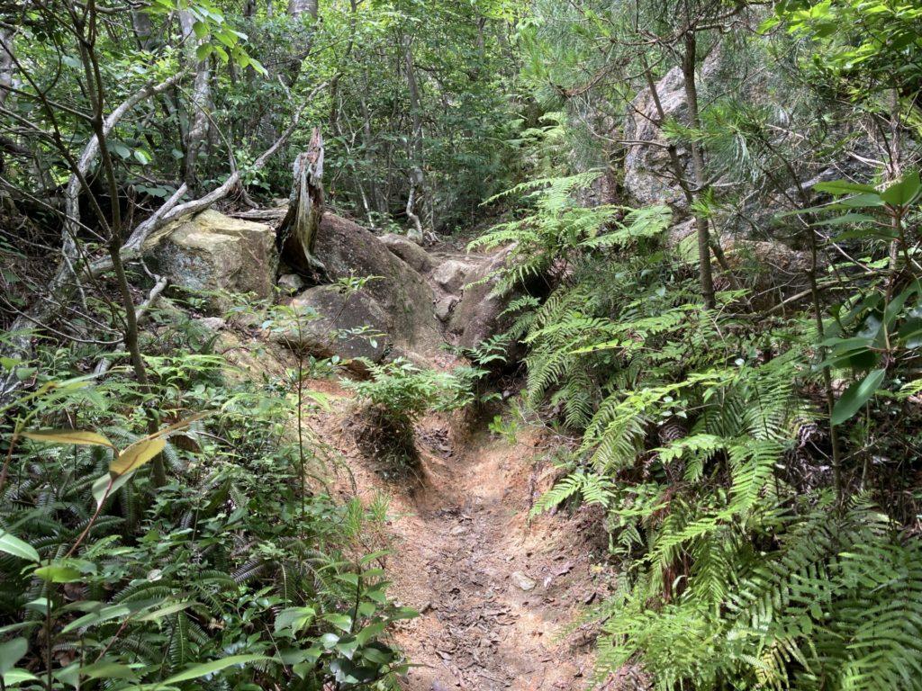 巨岩群手前の登山道